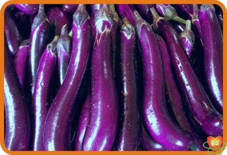 蔬菜配送-食材采购-茄子